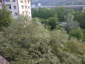 Краснодарский край, город
