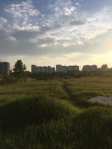 Обл Челябинская